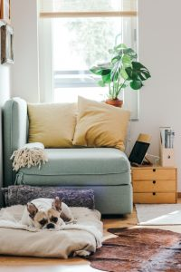a minimalist home is still your home