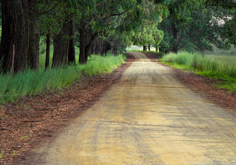 Setting goals help you decide which path to choose in life