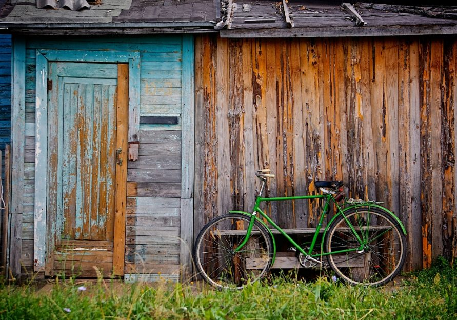 Declutter Your Garden Shed Things To Do In March