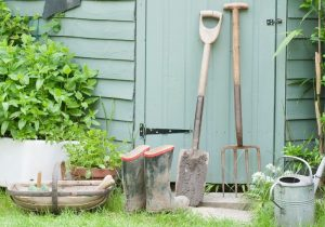 Simplify Your Home this summer